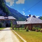 planina-tara-odmor-s21