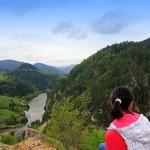 planina-tara-odmor-s25